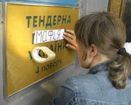 Миколаенко пообещал привести главу тендерного комитета на следующее заседание бюджетной комиссии
