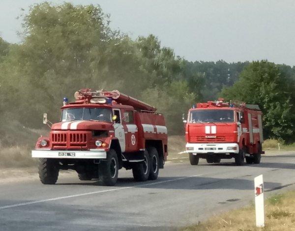 У Каховському районі гасили лісову пожежу 3 пожежно-рятувальні частини області