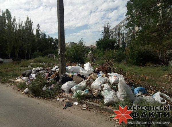 В Херсоне примут новый порядок обращения с мусором