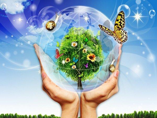 Депутат Херсонского горсовета предложил создать в городе управление экологии