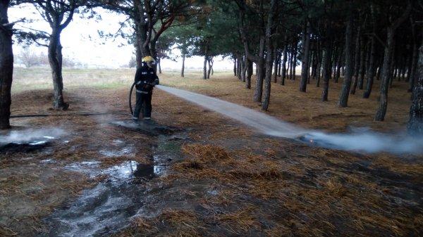 Каховські рятувальники попередили лісову пожежу