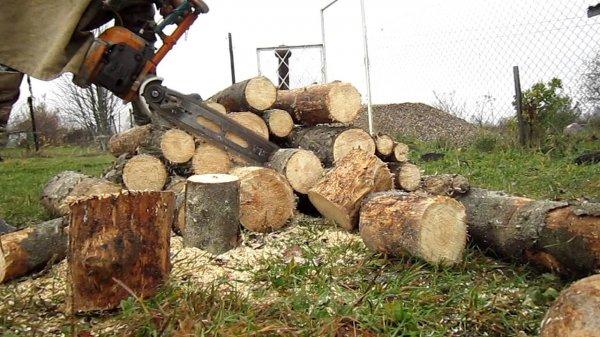 Моральный ущерб на полмиллиона: житель Херсонщины судился за бензопилу и дрова
