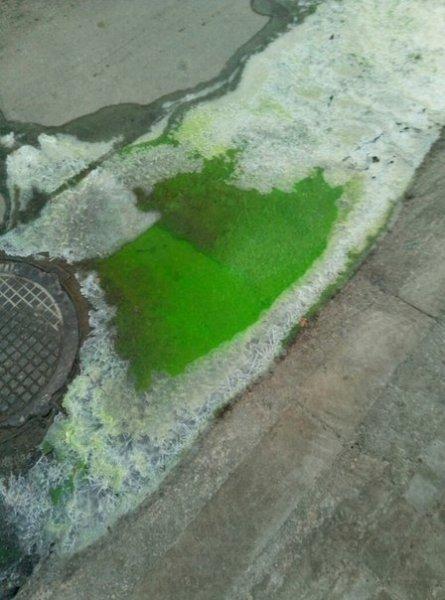 Херсонцы испугались зеленой жидкости на улицах города