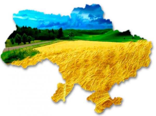 Тимошенко розповіла, в чому полягає національна ідея