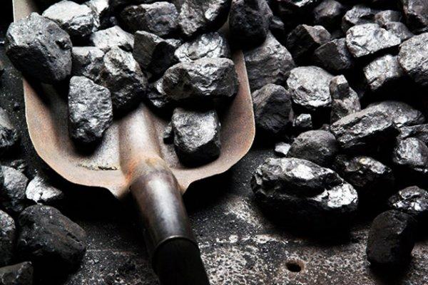 Закупкой угля поликлиникой на Херсонщине заинтересовались правоохранительные органы