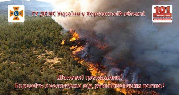 На Херсонщині ліквідовано 2 пожежі в лісових масивах