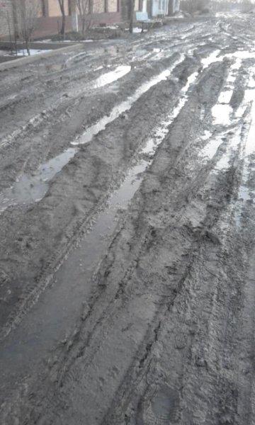 Жители поселка на Херсонщине жалуются на отсутствие дорог: для проезда нужен трактор или паром