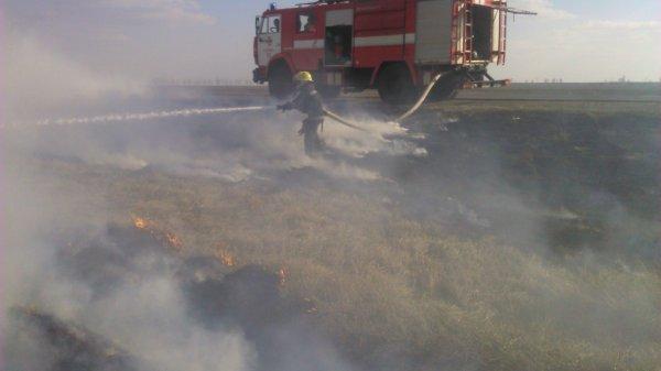 Минулої доби ліквідовано 6 пожеж в екосистемах