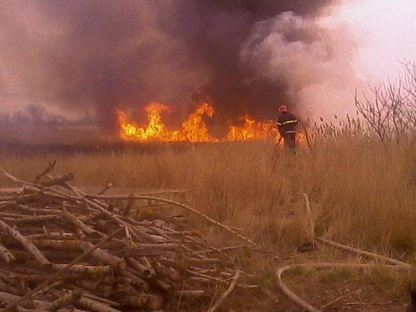 За останню добу рятувальники 9 разів залучалися до ліквідації сухої трави та сміття