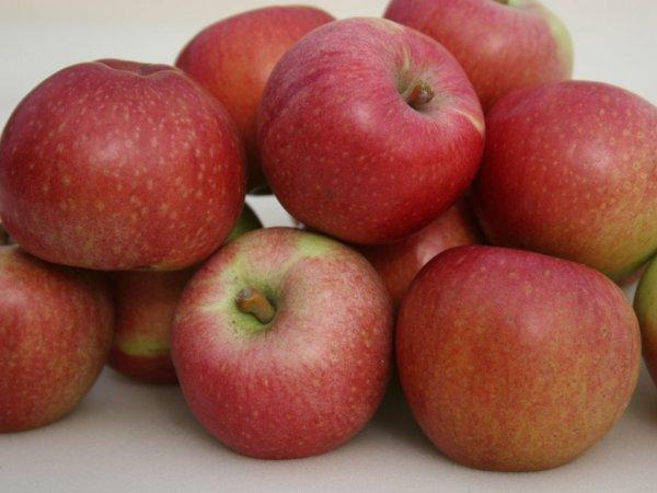 В Украине рекордно подорожают яблоки - эксперт