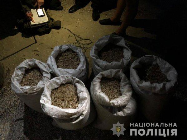 В Скадовському районі водні поліцейські затримали браконьєра з креветкою та крабами на суму 345 тисяч гривень