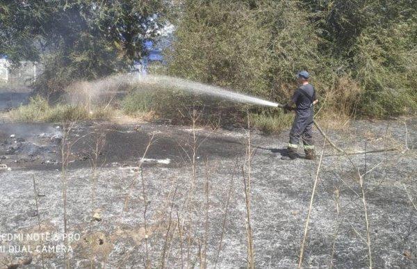 На відкритих територіях області ліквідовано 12 пожеж