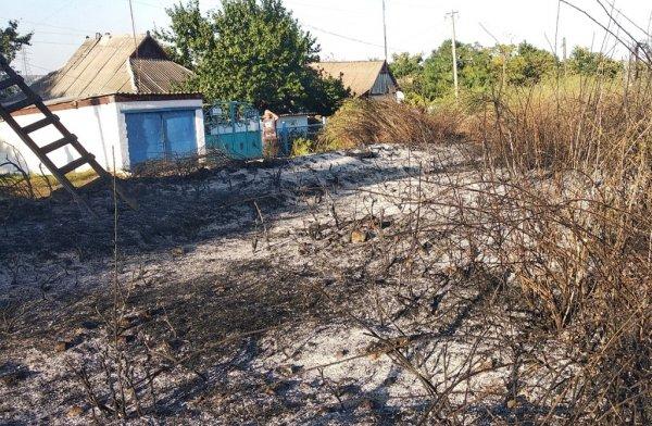 На Херсонщині ліквідовано 19 пожеж в екосистемах