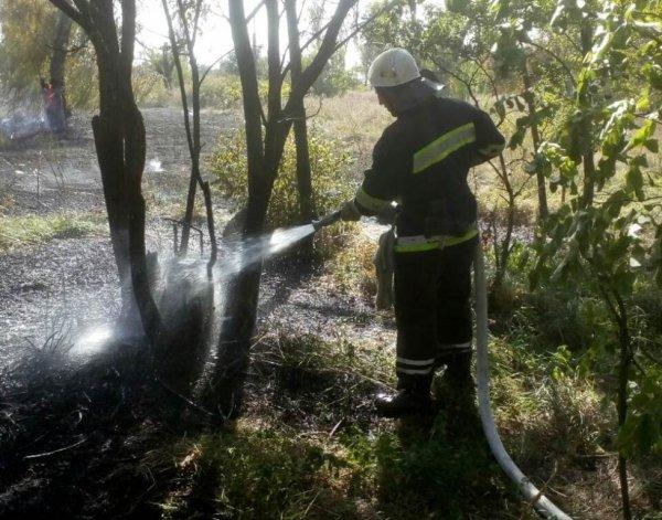 Минулої доби в екосистемах області ліквідовано 17 пожеж