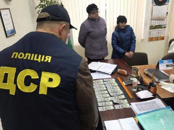 Главу Белозерской ОТО отстранили от должности