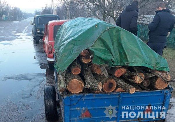 У Голопристанському районі дільничний поліцейський виявив автомобіль з незаконно спиляними деревами акації