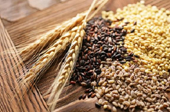 Украина экспортировала 3 млн тонн зерновых и зернобобовых