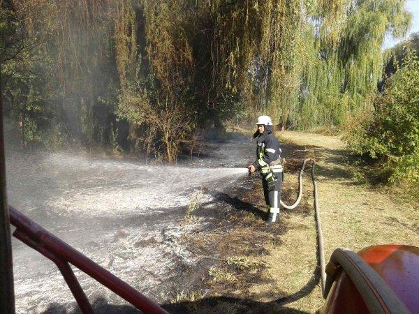 Херсонщина опять в огне: за сутки горело 5 эко-систем
